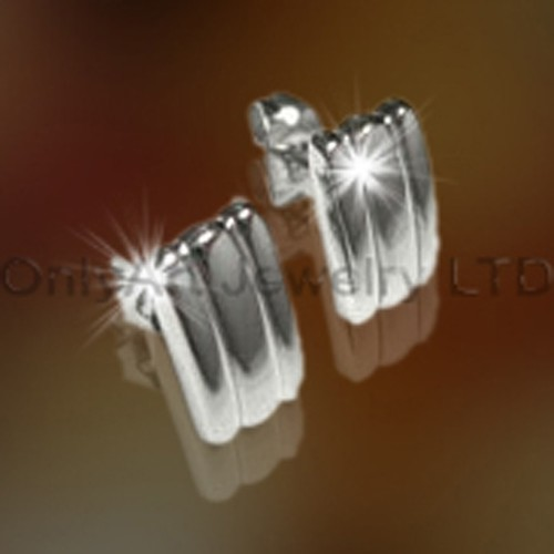 Stainless Steel Earring OATE0011