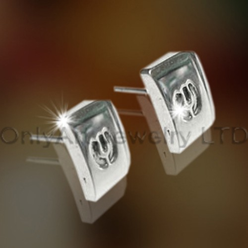 Titanium  Jewellery Earrings OATE0030